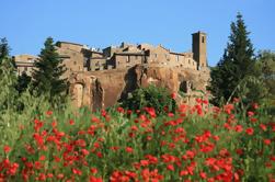 Excursión de un día a Asís y Orvieto desde Roma