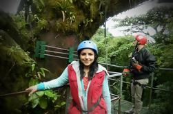 Combo Tour: Monteverde Cloud Forest Nature Tour en Night Walk
