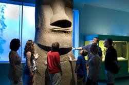 Passeio VIP do Museu Americano de História Natural