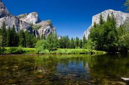 Parque Nacional de Yosemite y viaje de las Sequoias Gigantes