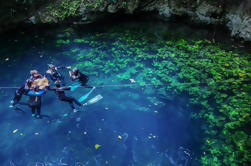 Descubrimiento Freediving