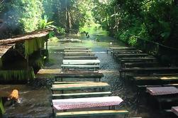 Tour Privado: Villa Escudero con almuerzo de Manila