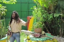 Excursión de la orilla de Falmouth: Experiencia de Bob Marley