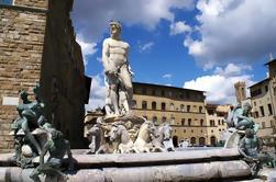 Excursão privada: Excursão turística de Florença