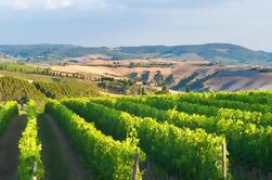 Private Chianti authentieke ervaring met twee heerlijke wijnproeverijen en twee charmante middeleeuwse dorpjes