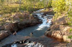 Excursión de 3 días a Kakadu y Litchfield Green Season de Darwin