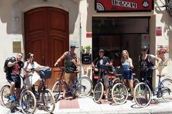 Malaga Tapas og vin Bike Tour