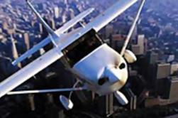 Excursión de la costa de Los Ángeles: Excursión de lujo del aeroplano del champán antes o después del crucero