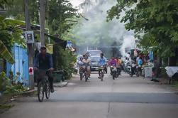 Tour privado en bicicleta de los parques y mercados de Bangkok con guía de habla inglesa y francesa