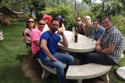 Excursión de 8 horas a los pequeños grupos de vinos de Provenza desde Niza