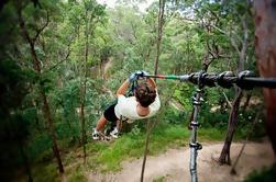Tamborine Mountain TreeTop Challenge