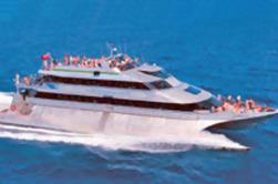 Gran Barrera de Arrecifes Snorkel Crucero desde Port Douglas