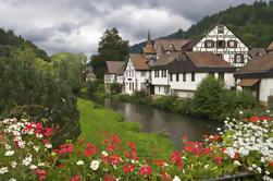 Excursión de un día a Bosque Negro y Cataratas del Rin desde Zurich