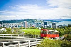 Wellington City Sights e Tour da Costa