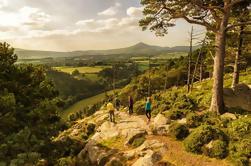 Wicklow con la caminata guiada incluyendo el viaje de Glendalough de Dublín