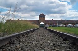 Visita normal a Auschwitz-Birkenau desde Cracovia con un guía que habla español