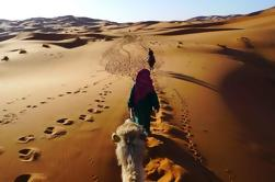 Excursión privada de 4 días desde Marrakech a Fez a través del desierto de Merzouga