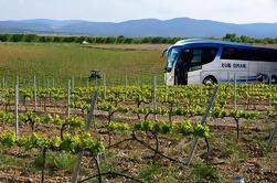 Valencia Wine Tour con Degustación y Almuerzo para Grupos