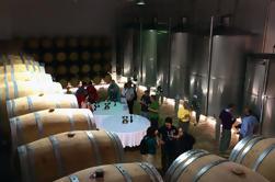 Bodega con Cata de Vino y Cocina de Tapas en Benidorm