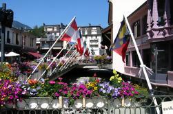 Chamonix Day Trip en Genève city tour