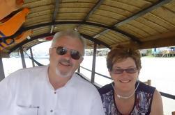 Tour Privado: Crucero por el Río Mekong desde Ho Chi Minh City