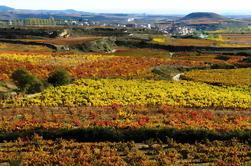 Excursión de un Día Privado en País Vasco