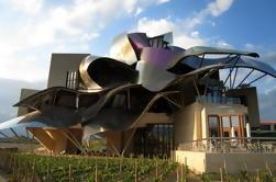 Excursión privada de vinos de Rioja desde San Sebastián