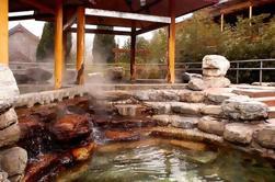 Excursion d'une journée privée: printemps chaud en plein air avec massage et visite de Juyongguan Pass