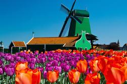 Amsterdã Super Saver 3: City Tour mais Zaanse Schans Windmills, Volendam e Marken Day Trip