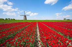 Excursión turística de Holanda en un día