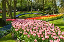 Skip the Line: Visita a los jardines de Keukenhof y visita a la granja de tulipanes desde Amsterdam