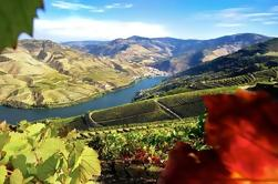 Autêntico Douro Wine Tour Incluindo Almoço