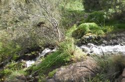 Excursión a las playas de Las Palmas: Excursión privada de trekking en Gran Canaria