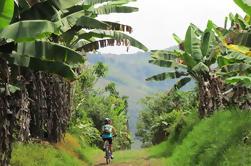 Tour de Bicicleta de 7 Días: Café, Cultura y Valle de Cocora desde Pereira