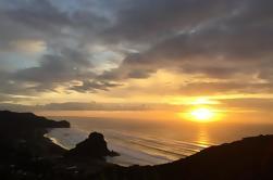 Tour privado: Piha de día completo y Eco-Tour de Waitakere incluyendo almuerzo de Auckland