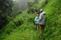 Excursion privée: Nature Trekking et Zip Lining de Chiang Mai, y compris le village de la tribu Long Neck