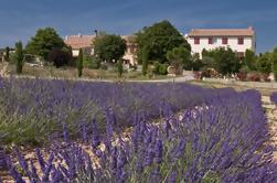 Excursión privada de Verdon Canyon y Moustiers Sainte Marie desde Niza