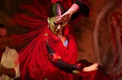 Una noche en Sevilla con espectáculo de flamenco y degustación de tapas