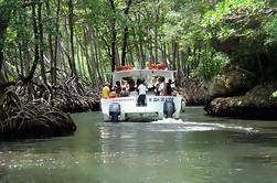 Excursão de um dia a Punta Cana com destino ao Parque Nacional Los Haitises