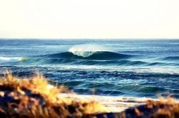 7 días de Byron Bay, Evans Head y Moonee Beach Surf Safari de Brisbane, Gold Coast o Byron Bay