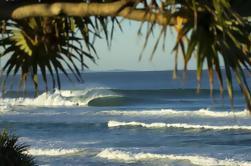 10 jours d'aventure de surf de Sydney à Brisbane, y compris Coffs Harbour, Byron Bay et Gold Coast