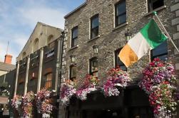 Excursión histórica de Dublín