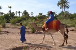 Desierto Camel Ride en Marrakech