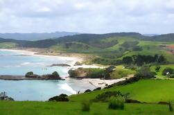 Tour Privado de Día Completo al Parque Regional de Tawharanui desde Auckland