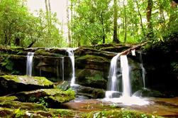 Great Smoky Mountains cascade d'aventure