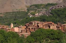 Montagnes de l'Atlas, y compris Camel Ride et Berber Guest House Day Tour de Marrakech