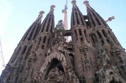 Barcellona Half-Day Tour con autista-guida locale