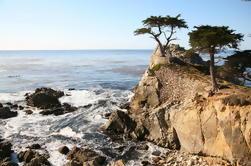 Excursión de un día a Monterey, Carmel y 17 millas desde SF