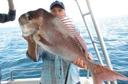 Carta de la pesca de Half-Day de la costa de oro