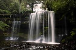 Parque Nacional Mt Field Viaje activo de día desde Hobart Incluyendo Bonorong Santuario de Vida Silvestre y Mt Wellington